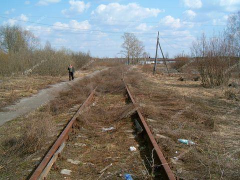 semenovskiy-rayon фото