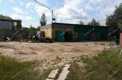 ul-zayceva-d-30 фото