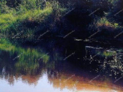 selo-lesunovo-sosnovskiy-rayon фото