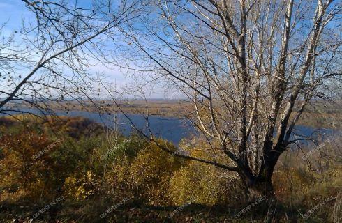 selo-prosek-lyskovskiy-rayon фото