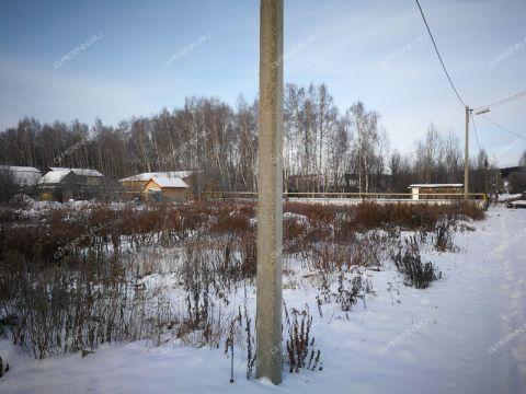 derevnya-ogolihino-gorodskoy-okrug-bor фото